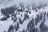 Alta Winter Scenic Project