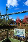 USA, Oregon, Portland, Water Pollution Control Laboratoty, St. John's Bridge and the Rain Garden.