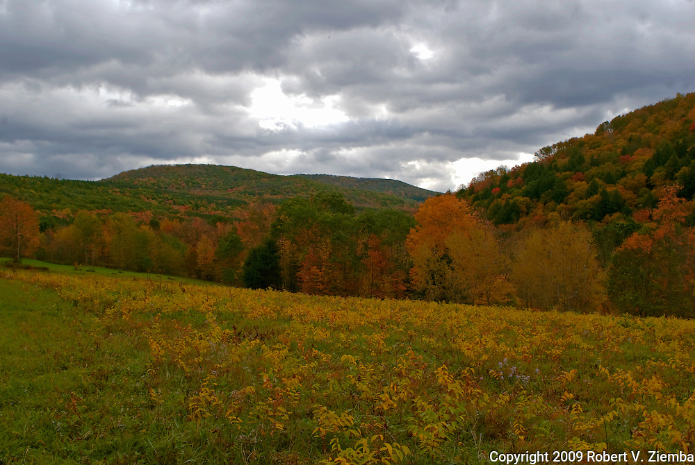 """""""Cat Hollow""""-An image of Cat Hollow, a valley in the Catskill Mountains of New York in autumn."""