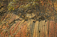 Basalt columns, Moses Coulee Columbia Plateau Washington