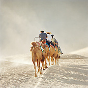 Tourists riding camels in the desert of the Singing Sand Dunes outside of Dunhuang, China