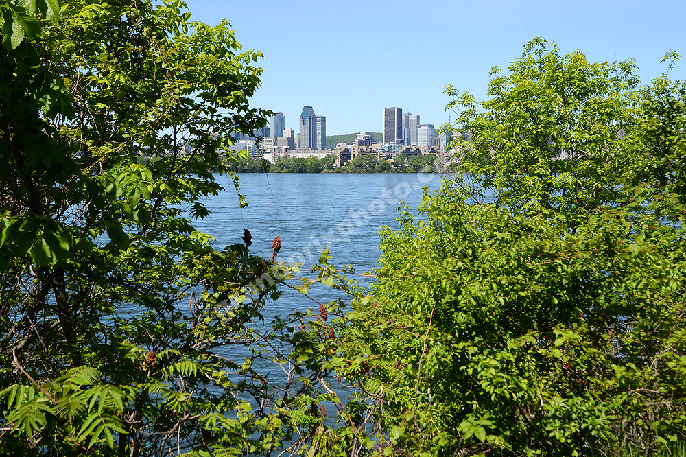 St Lawrence river and city skyline before the 2019 Canadian Grand Prix in Montreal. Photo: Grand Prix Photo