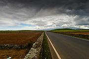 Landscapes of Sao Miguel Azores, cost,trees,sky,sea,ocean,island,green,grass,cows,goodlife,hevan,