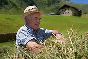 Alpine transhumance (Obere Seebachalm) in the Defereggen Valley. High Tauern National Park (Nationalpark Hohe Tauern), Central Eastern Alps, Austria | Bergbauer bewirtschaftet die Obere Seebachalm traditionell. Seebachalm am ende des Osttiroler Defereggentals. Nationalpark Hohe Tauern, Osttirol in Österreich