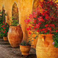 Moni Arkadiou. Crete. Greece. View of colourful pot plants lined up against a rustic stone wall inside the beautiful and impressive Monastery of Arkadiou. The Orthodox Monastery of Arkadiou was originally founded in the 11 century and is set on a plateau in the Ida Mountains 23 kilometres southeast of Rethymno.