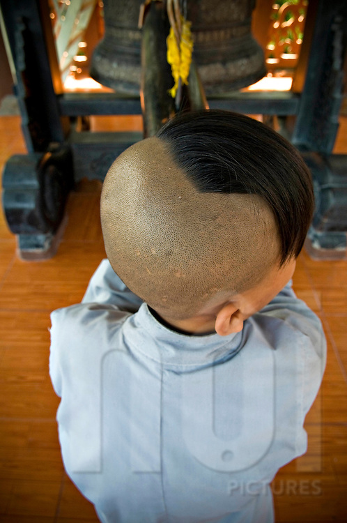 Partially shaved head of a young Vietnamese buddhist monk, Vietnam, Southeast Asia