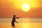 Fly fisherman at sunrise.
