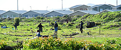 SOUTH AFRICA - Cape Town - 7 July  2020  - Mfuleni residents and backyarders have invaded a piece of vacant land.They made marking for their yards as they plan to build their shacks.They complain about not having their own houses and not affording rent as they have been backk yarders for too long . Picture: Phando Jikelo/African News Agency(ANA)