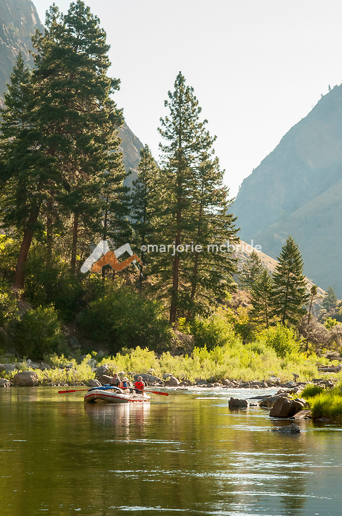 Scenic morning light, boating in The Impassible Canyon on the Middle Fork of the Salmon River during six day rafting vacation, Idaho.