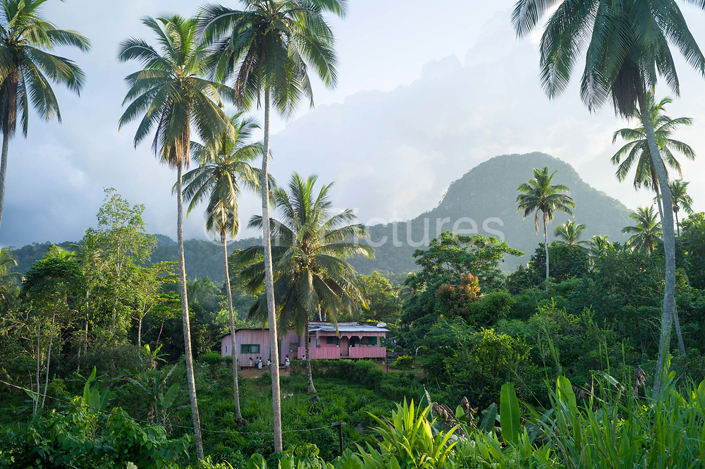 A pink house in the mountains above the capital, Santo António, Principe<br /> Sao Tome and Principe, are two islands of volcanic origin lying off the coast of Africa. Settled by Portuguese convicts in the late 1400s and a centre for slaving, their independence movement culminated in a peaceful transition to self government from Portugal in 1975.