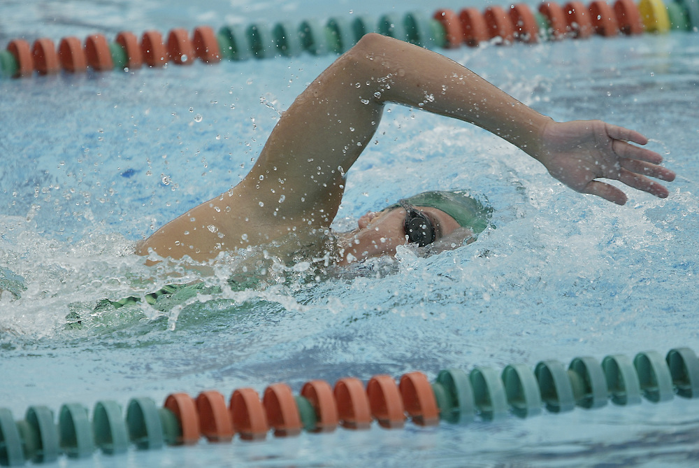 2004 Miami Hurricanes Swimming & Diving