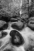 intimate landscape scene of Elowah Falls, Columbi River Gorge, Oregon