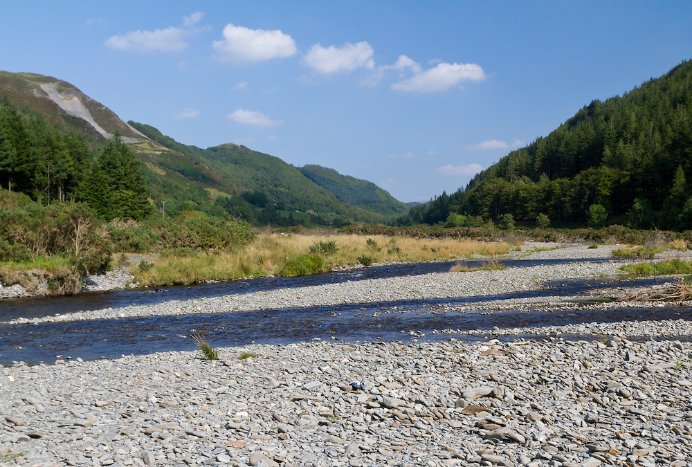River Ystwyth, Ceredigion, with well developed shingle banks. Habitat of Arctosa cinerea. Some of the Rivers in Mid and North Wales have well developed shingle banks that support  populations of rare, specially adapted, invertebrates including the large River Bear-Spider Arctosa cinera