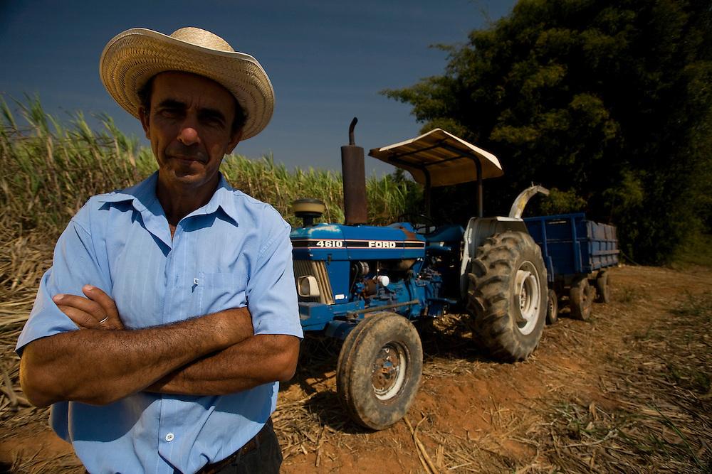 Bambui_MG, Brasil...Trabalhador rural na plantacao de cana em Bambui, Minas Gerais...The sugar cane agriculture in Bambui, Minas Gerais...FOTO: JOAO MARCOS ROSA /  NITRO
