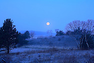 A frosty March early morning on Wing Island in Brewster.