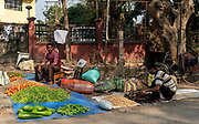 Selling fruit and vegetables on the street close to Jorhat, Assam, india.