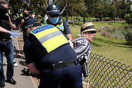 MELBOURNE, VIC - SEPTEMBER 19: A lady is arrested during the Freedom protest on September 19, 2020 in Melbourne, Australia. Freedom protests are being held in Melbourne every Saturday and Sunday in response to the governments COVID-19 restrictions and continuing removal of liberties despite new cases being on the decline. Victoria recorded a further 21 new cases overnight along with 7 deaths. (Photo by Dave Hewison/Speed Media)