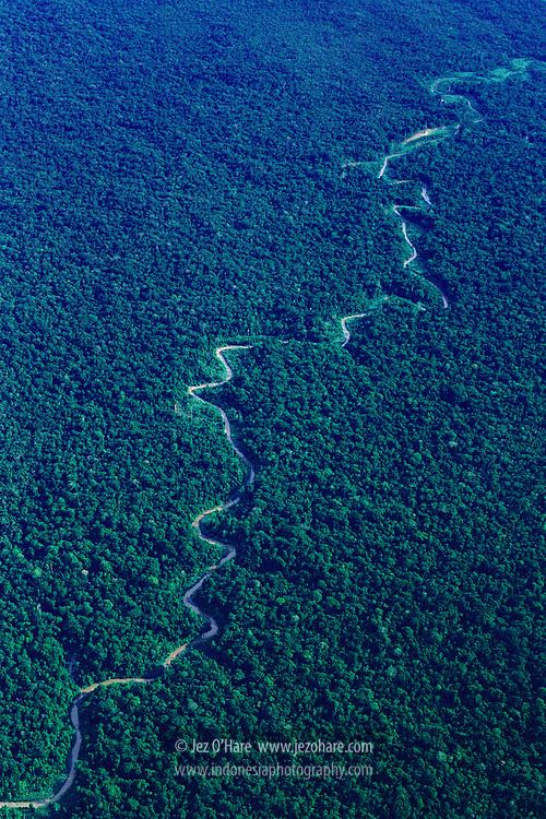 Virgin rainforest, Rouffaer reserves, Papua, Indonesia.