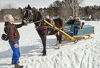 "Connie Moses and ""Gilford"" a 9 year old Arab Percherom wait while Bob and Marilyn Bolduc hop on board the 1895 wooden sleigh with Rick Moses to go a ride around the trails at Bolduc Park Monday morning.   (Karen Bobotas/for the Laconia Daily Sun)"