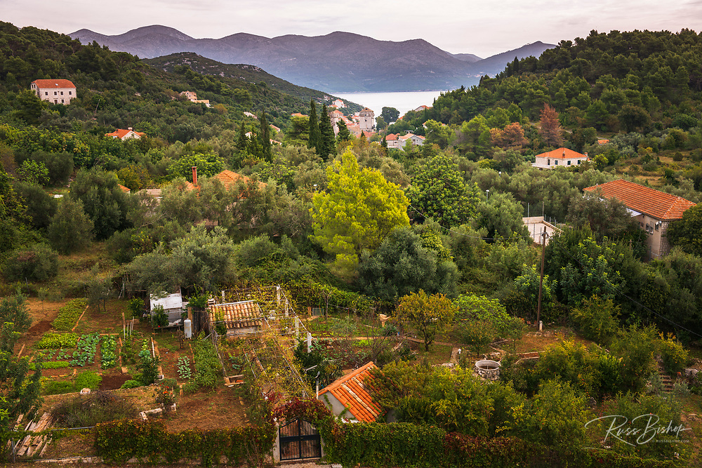 View from the Church of the Holy Spirit, Sipan Island, Dalmatian Coast, Croatia