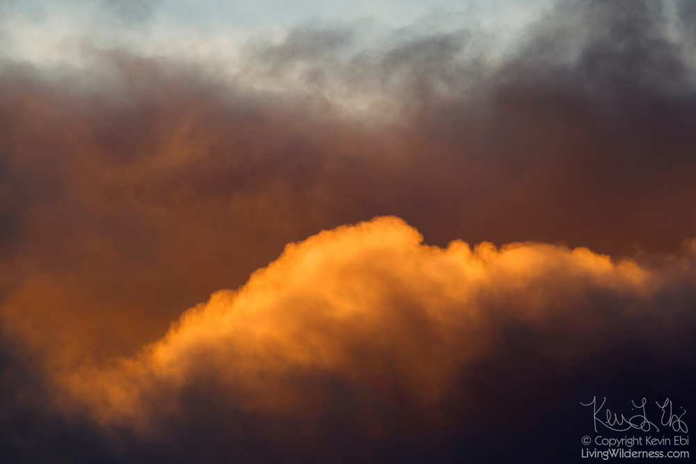 The golden light of the setting sun lights up the top of a cumulonimbus cloud as a storm moves in over Bothell, Washington