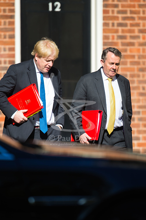 Foreign Secretary Boris Johnson and Secretary of State for International Trade Liam Fox arrive at 10 Downing Street to attend the weekly cabinet meeting.