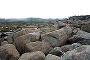 Periglacial Plateau, Mount Wellington - Tasmania