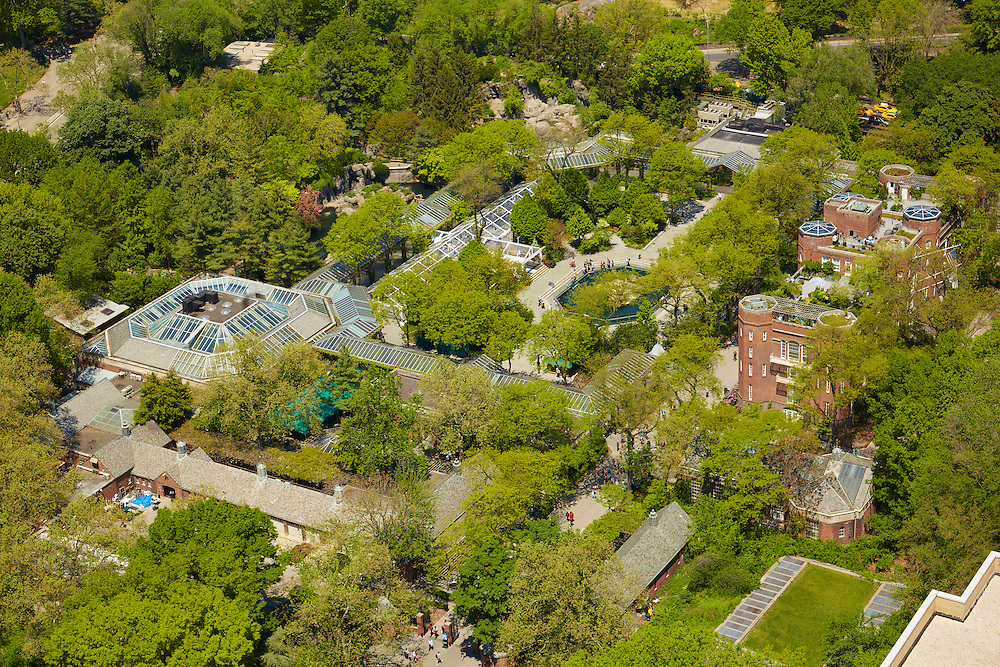 View of the Central Park Zoo from 795 Fifth Avenue Penthouse, The Pierre