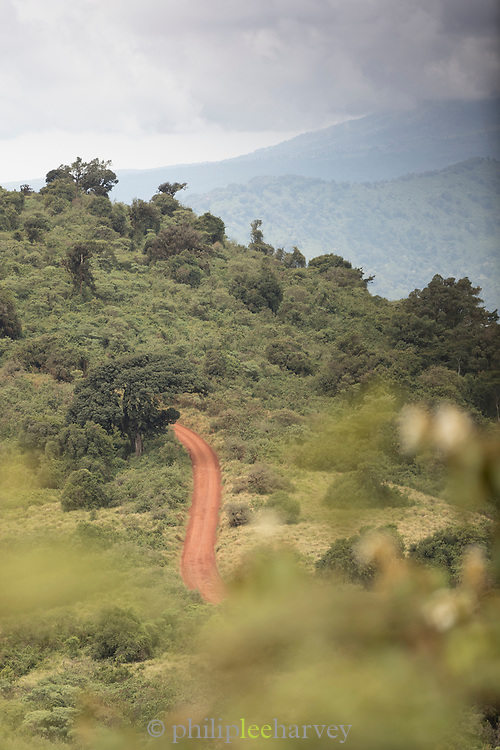 Landscape with a distant view of a Dirt road on the rim of the Ngorongoro Crater, Tanzania