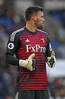Football - 2018 / 2019 Premier League - Brighton and Hove Albion vs. Watford<br /> <br /> Ben Foster of Watford gives a thumbs up at The Amex Stadium Brighton <br /> <br /> COLORSPORT/SHAUN BOGGUST