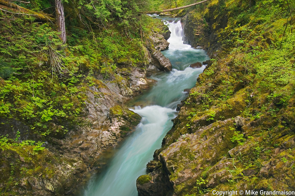 Waterfalls on the Little Qualicum River<br /> Little Qualicum Falls Provincial<br /> British Columbia<br /> Canada