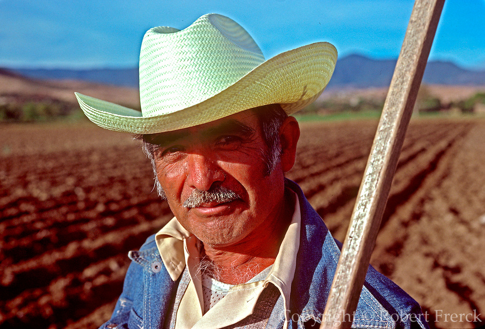 MEXICO, AGRICULTURE farmer using traditional plow and methods in fields near Oaxaca