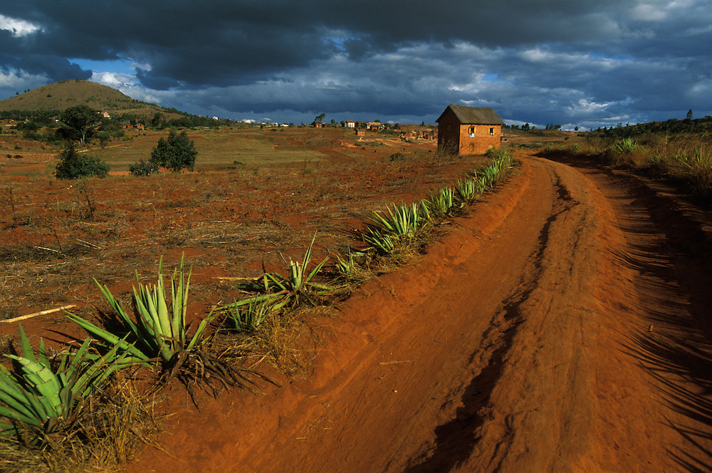 Dirt road and mud and brick houses, colored by the red soil of the Madagascan highlands, south of the capital of Antananarivo, Madagascar.