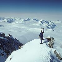 A mountaineer rejoices atop Mount Shinn, 3rd highest peak in Antarctica.