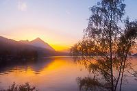 Lake Thun (Thunersee) at sunset, Canton Bern, Switzerland