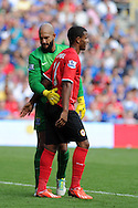 Everton's keeper Tim Howard pats Cardiff's Fraizer Campbell on the back.  Barclays Premier league, Cardiff city v Everton at the Cardiff city Stadium in Cardiff,  South Wales on Saturday 31st August 2013. pic by Andrew Orchard,  Andrew Orchard sports photography,