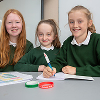 Kilkishen NS Students Myra Donnellan, Eadaoin Moroney and Lilly Kavanagh working on their Jessies project