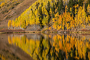 Red Mountain, Hayden Mountain, and golden aspens reflect in Crystal Lake Reservoir on a sunny morning in Uncompahgre National Forest, San Juan Mountains, south of Ouray, Colorado, USA.