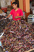 A man selling dried chili peppers at the Sunday market in Tlacolula de Matamoros, Mexico. The regional street market draws thousands of sellers and shoppers from throughout the Valles Centrales de Oaxaca.