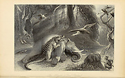 Alligator And Dead ElephantFrom the book ' The Oriental annual, or, Scenes in India ' by the Rev. Hobart Caunter Published by Edward Bull, London 1834 engravings from drawings by William Daniell