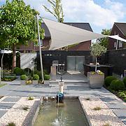 Modern Garden 915