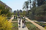 The Getty Villa, Herb Garden, Malibu, California