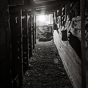 The stables built onto the side of the hut where the ponys and mules were housed.
