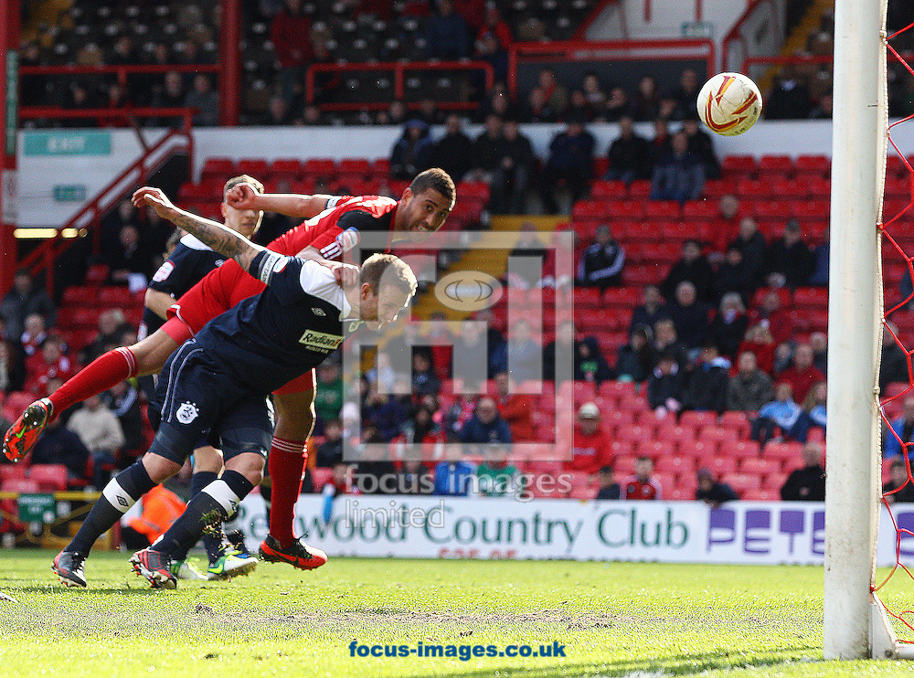 Picture by Paul Terry/Focus Images Ltd +44 7545 642257.27/04/2013.Lewin Nyatanga of Bristol City scores to make it 3-1 during the npower Championship match at Ashton Gate, Bristol.