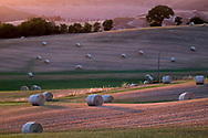 Travel Photography - Hay bales in Tuscany countryside. Photo by Lorenz Berna