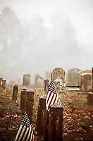 Flags in a cemetery proudly pay tribute to veterans' graves.