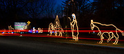 Car lights cause streaks in a long time exposure as the story of the birth of Jesus is told by a variety of illuminated scenes at the Way of Lights holiday light display at the National Shrine of Our Lady of the Snows in Belleville in this photo taken December 3, 2019. This is the 50th anniversary of the annual light display, which runs from 5 pm to 9 pm through December 31.<br /> Photo by Tim Vizer