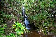 Waterfall, Waipio Valley, Big Island of Hawaii