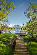 Scenic landscape with view of the Glenorchy Lagoon and a boardwalk, Glenorchy, South Island, New Zealand