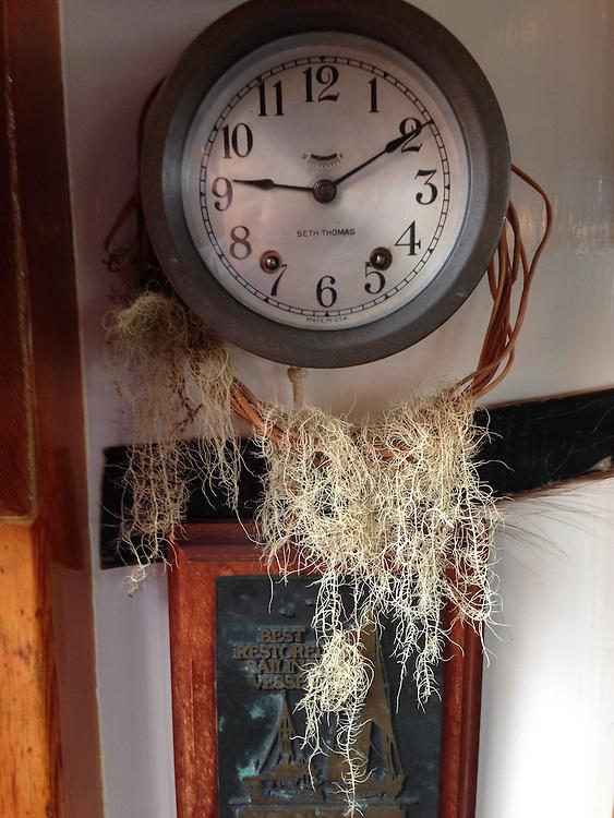 Epiphytes on Clock inside SV Maple Leaf Wheelhouse, Gulf Islands, British Columbia, Canada